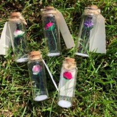 Tiny Flowers in a Bottle